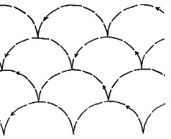 Shell - 4 rows of 2""